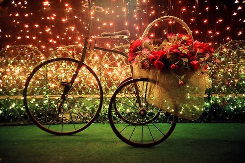 Eventi per famiglie Firenze 20 e 21 dicembre