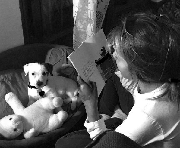 Sostegno per i bambini con DSA a Firenze con la pet therapy