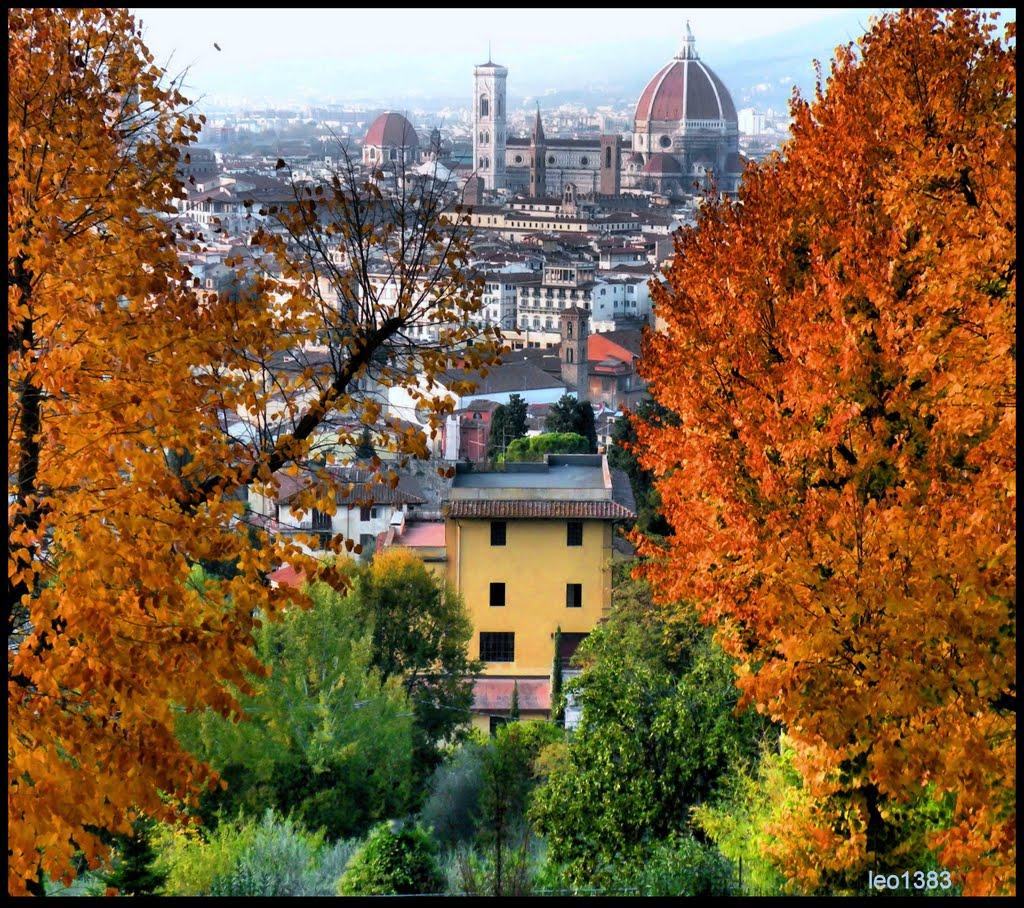 Eventi per famiglie Firenze 8 e 9 novembre