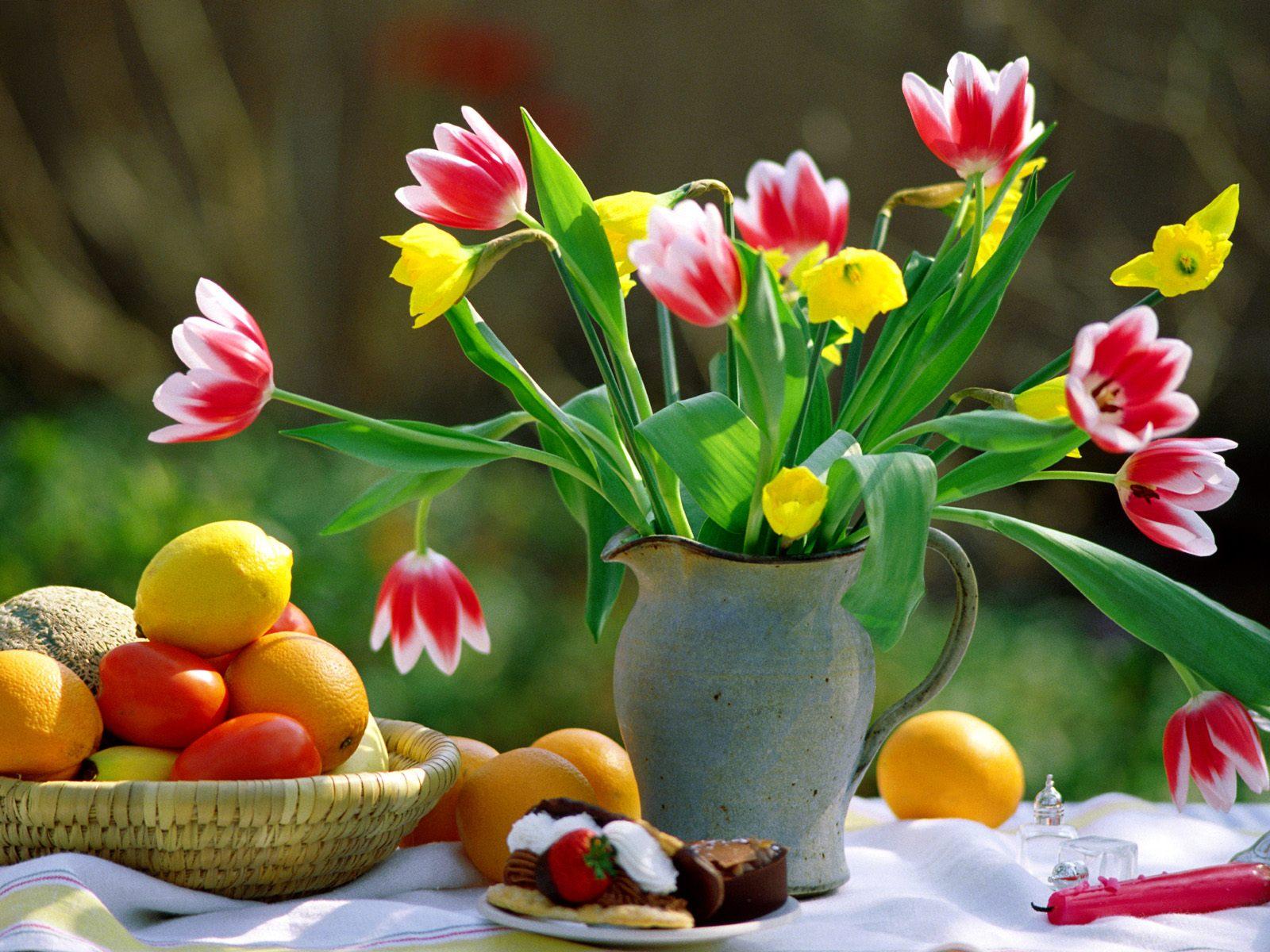 Eventi per famiglie Firenze 28 e 29 marzo 2015