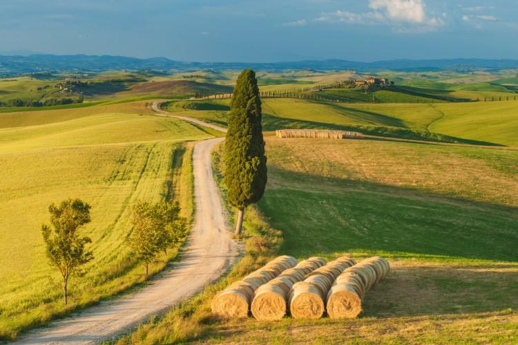 Eventi per famiglie Firenze 1 e 2 agosto 2015