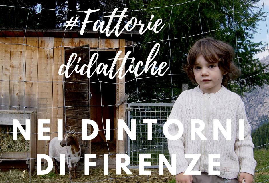 Fattorie didattiche per bambini a Firenze e nei dintorni